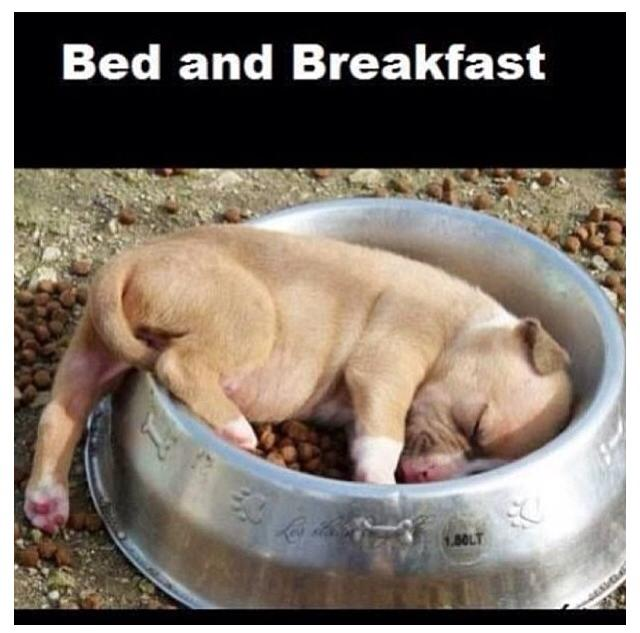 Bed & breakfast пакет