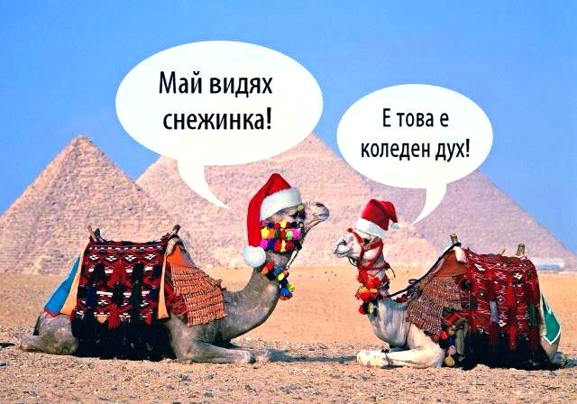 Коледният дух е на всякъде около нас